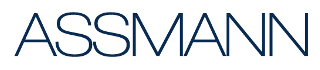 ASSMANN Electronic GmbH
